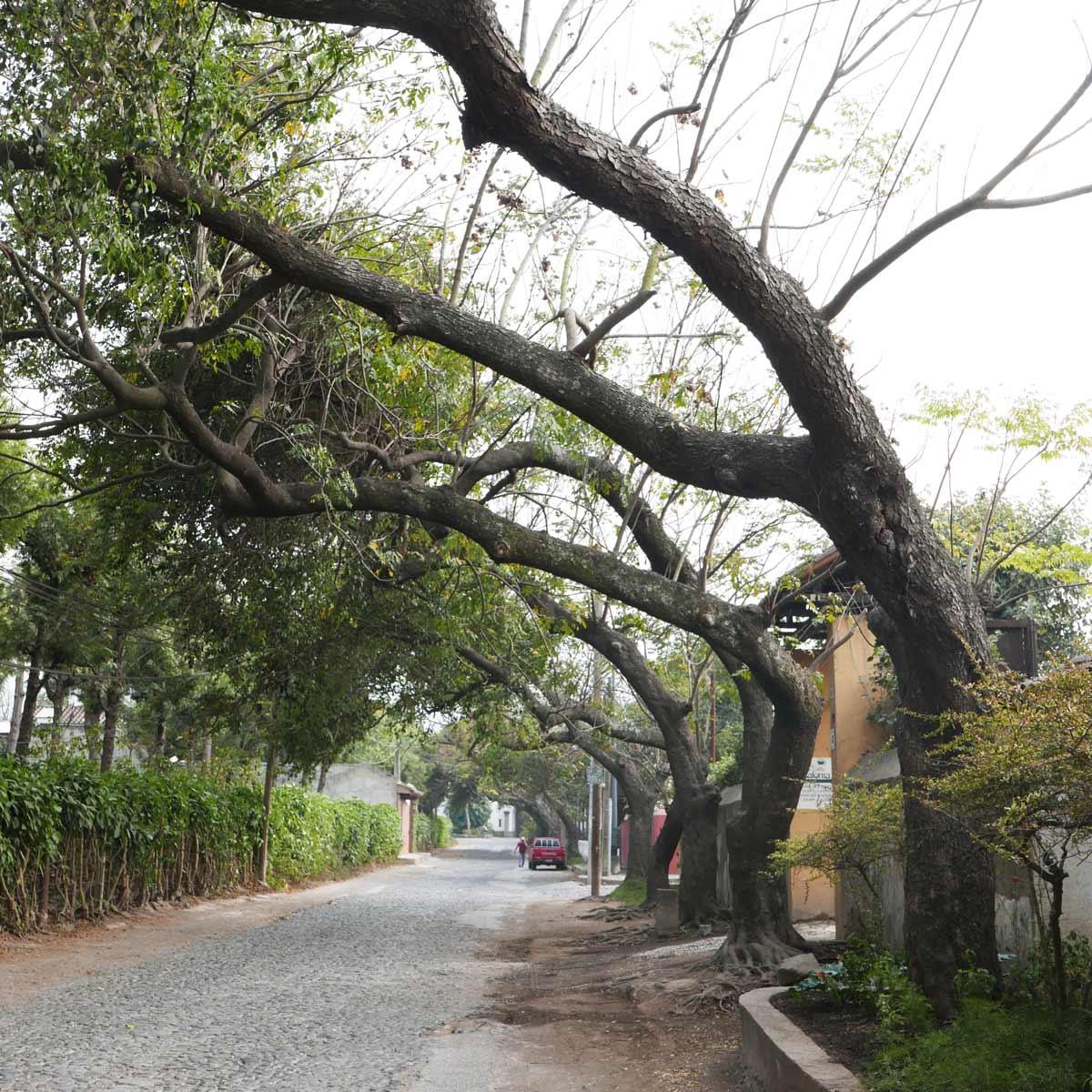 Street on outskirts of Antigua guatemala