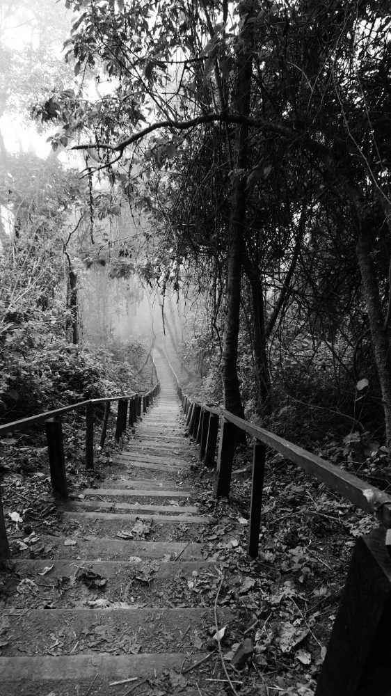 The 570 steps down from the mirador to Lake Chicabal