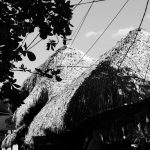 Hay roof (palapa) in main street in El Tunco village, El Salvador