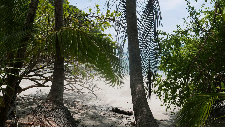 Sneak peak of Playa Espadilla in Manuel Antonio national park