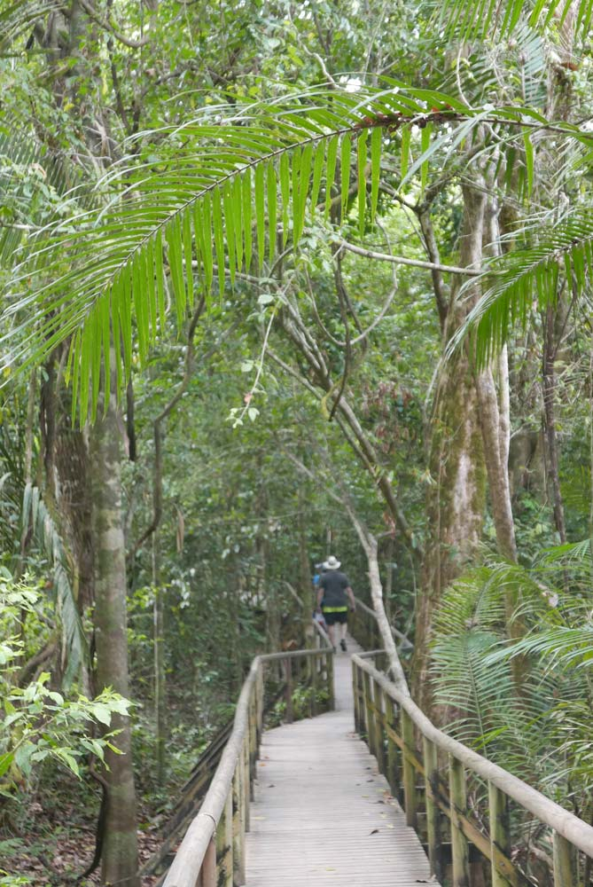 Main walkway near entrance of Manuel Antonio national park