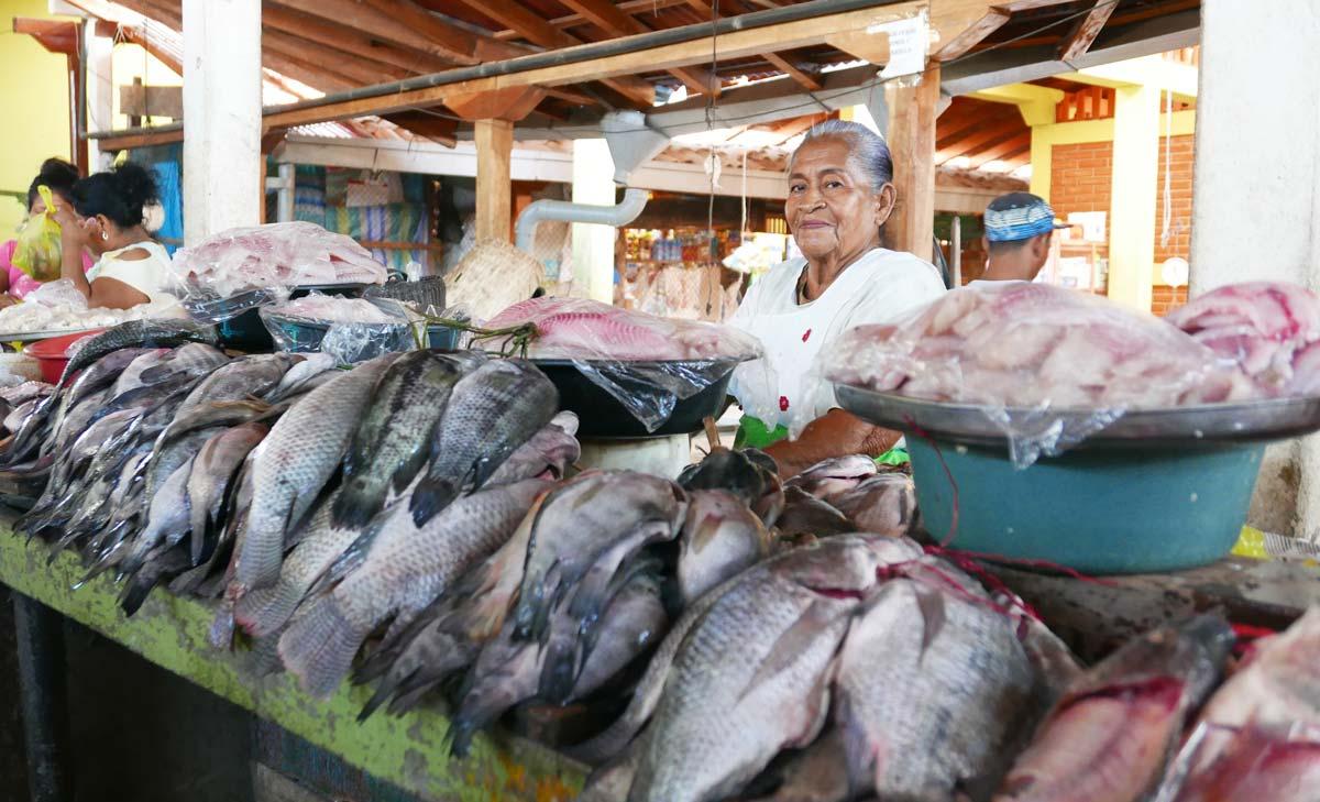 Fish stand in the Mercado Municipal in Granada, Nicaragua