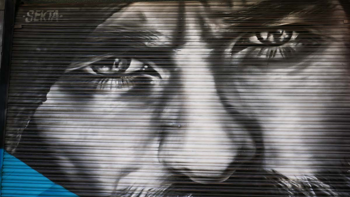 Street art on a garage door in Guadalajara
