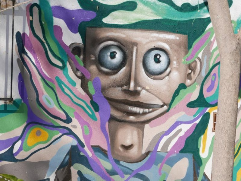 Street art in the Xochimilco district of Oaxaca city