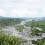 Amazon basin near Mera